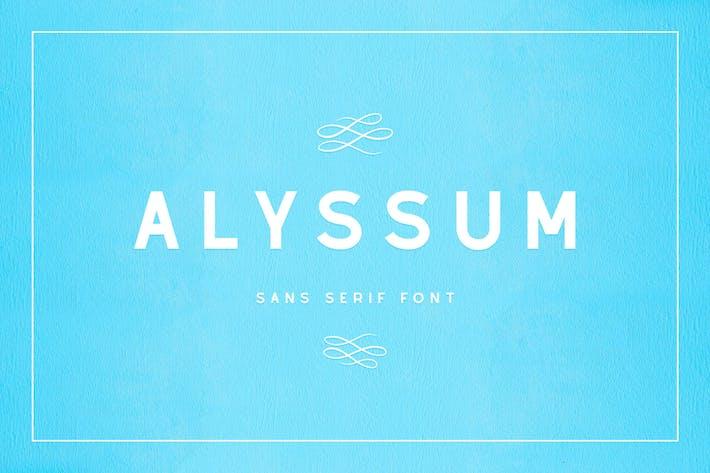Thumbnail for Alyssum - Sans Serif Font