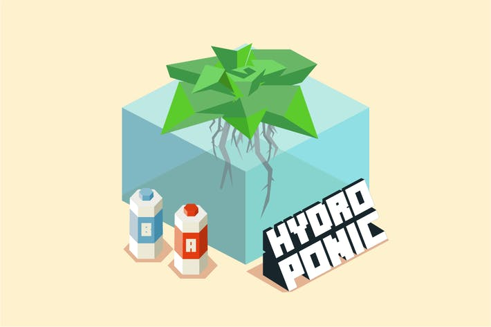 Thumbnail for hydroponic for home gardening
