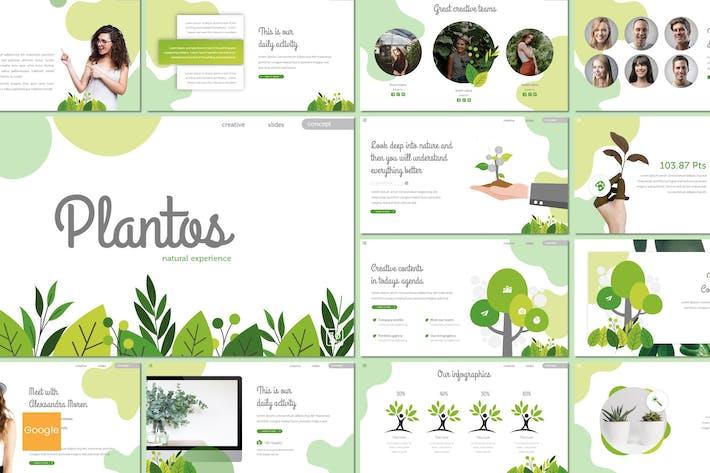 Cover Image For Plantos - Google Slides Template