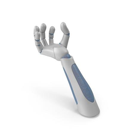 Robot Hand Upwards Object Hold Pose