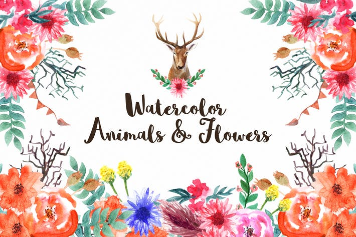 Cover Image For Watercolor Animals & Flowers