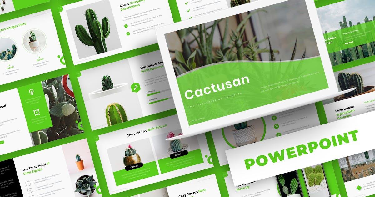 Download Cactusan - Powerpoint Template by karkunstudio