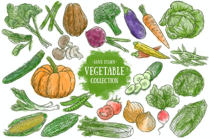 Thumbnail for Hand drawn vegetables collection