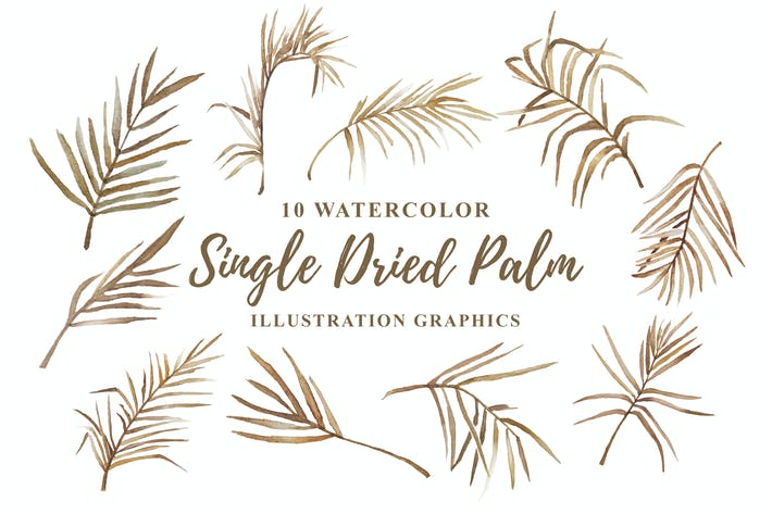 Thumbnail for 10 Watercolor Single Dried Palm Illustration