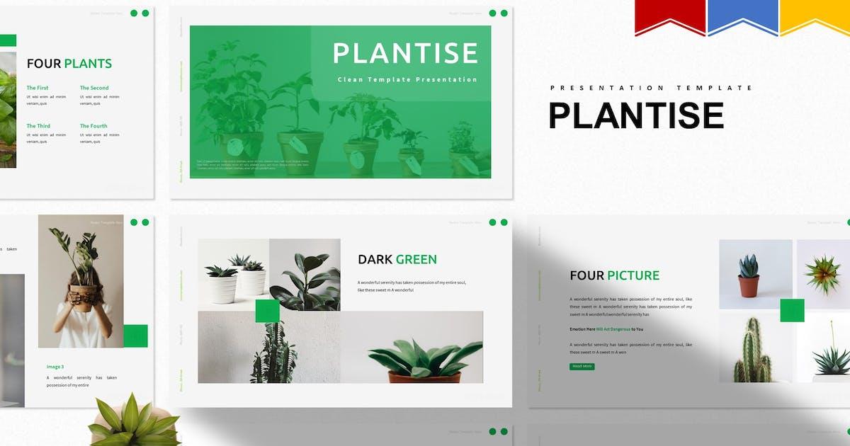 Download Plantise   Powerpoint, Keynote, Google Slides by Vunira
