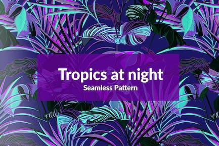 Tropics at night