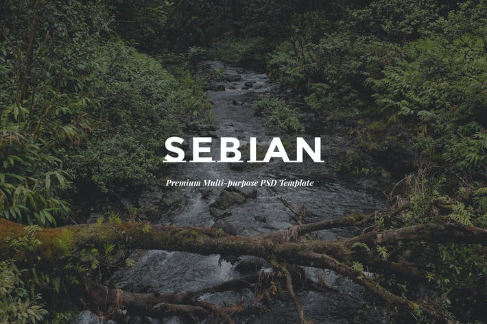 Thumbnail for SEBIAN - Multi Purpose eCommerce PSD Template