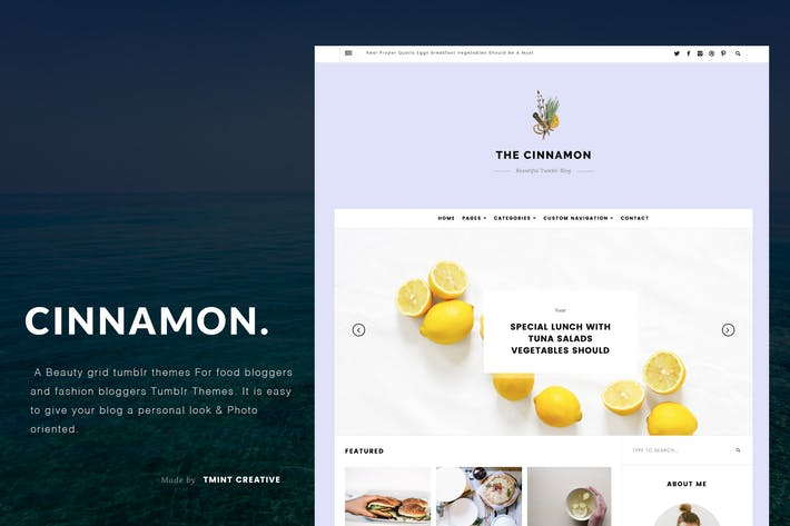 Cover Image For Cinnamon | Casual Grid Tumblr Theme