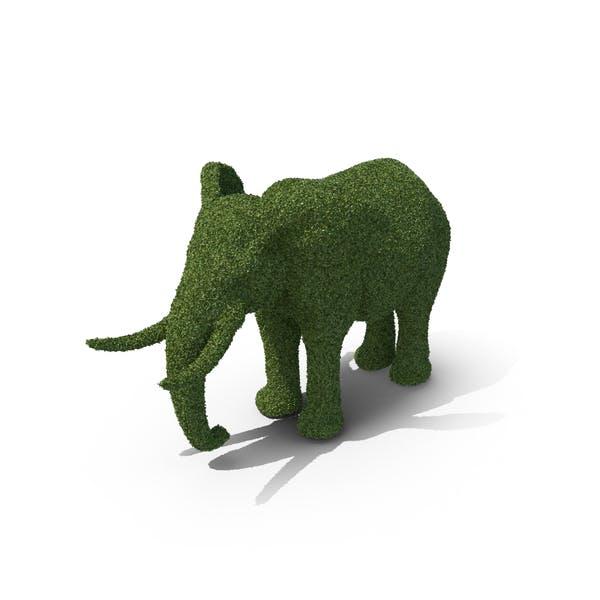 Thumbnail for Topiary Elephant