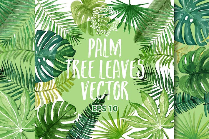 Thumbnail for Tropical Palm Vector