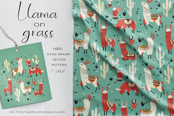 Thumbnail for Lama auf Gras