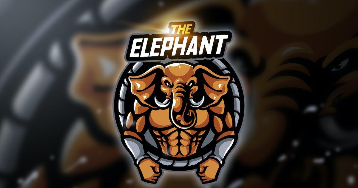 Download Elephant kp - Mascot & Esport Logo by aqrstudio