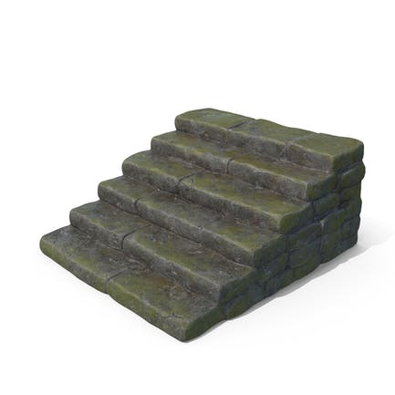 Bemo-feuchte Steinschritte