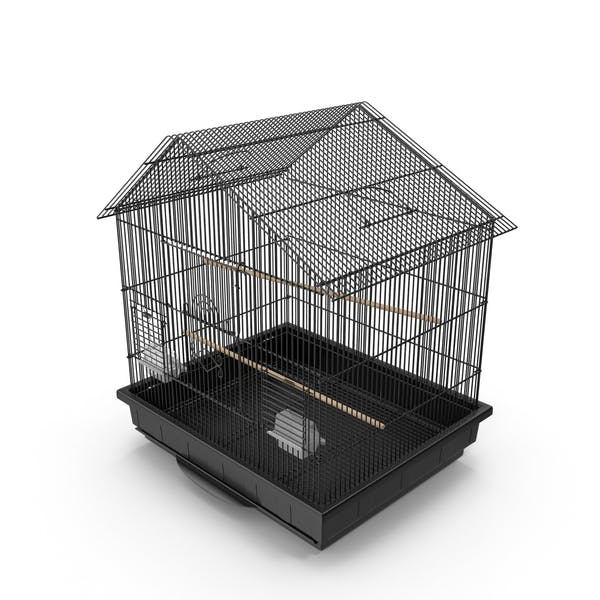 Thumbnail for Bird Cage