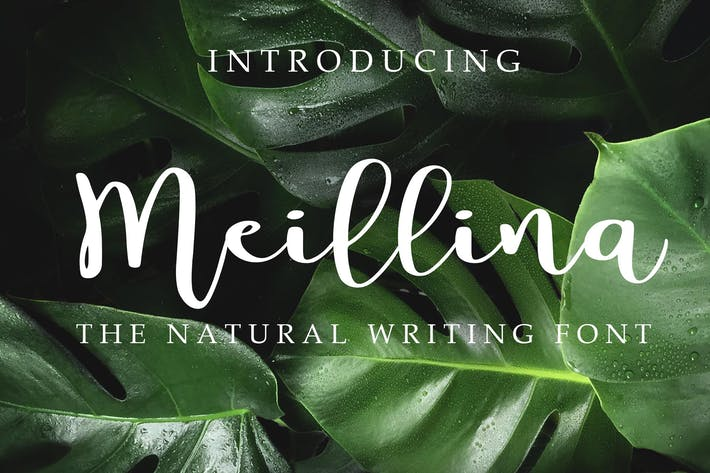 Thumbnail for Meillina Natural Font