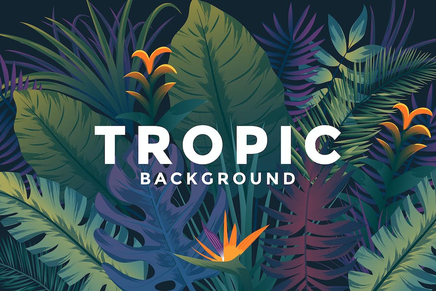Various Tropical backgrounds with jungle plants