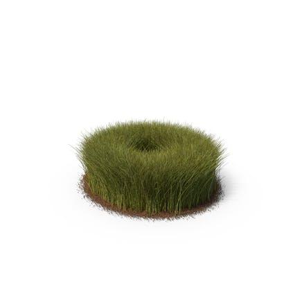 Gras & Schmutz hoch