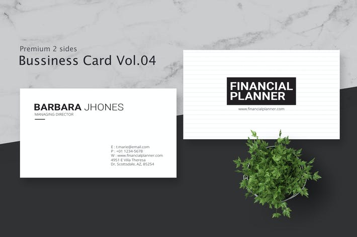 Thumbnail for Business Card Pro V.004