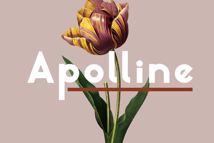 Thumbnail for Apolline | Sans Serif Font