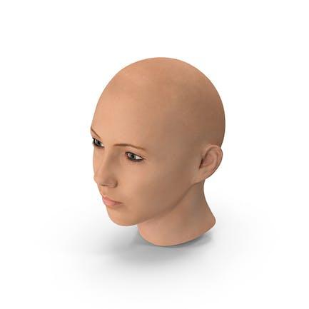 Weibliche Glatze