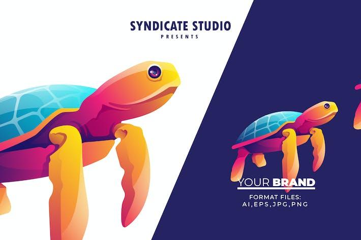 Thumbnail for Turtle Gradient Logo