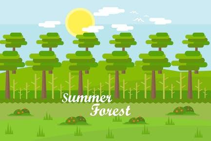 Summer Forest - Illustration Background