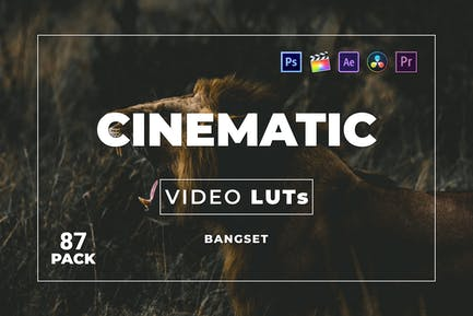 Набор Кинематографическая наборов 87 Видео LUTs