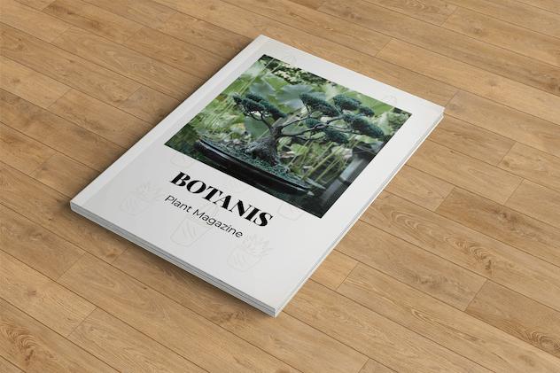 Botanist – Plant Magazine