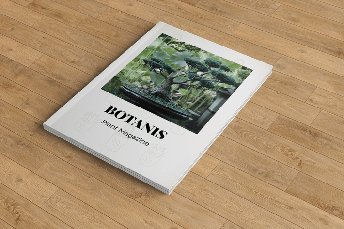 Thumbnail for Botanist – Plant Magazine