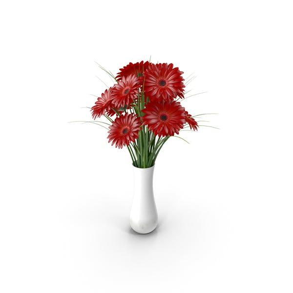 Flowers Gerbera Red