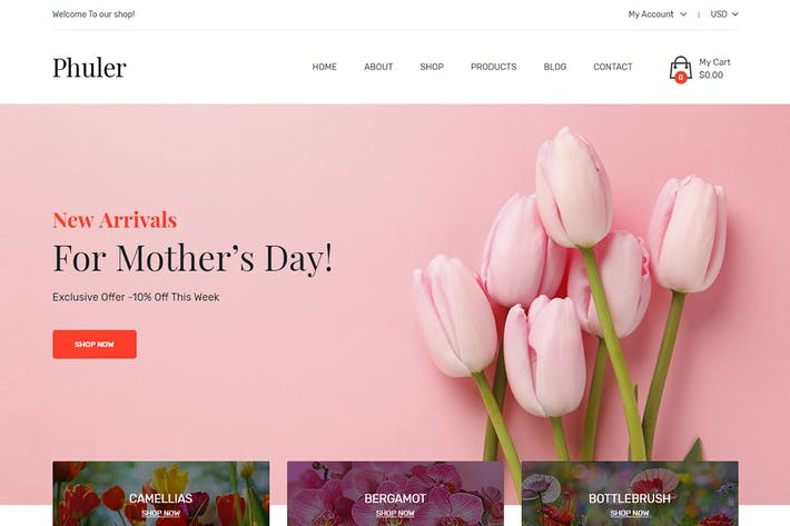 Thumbnail for Phuler - Flower Shop Shopify Theme + DropShipping