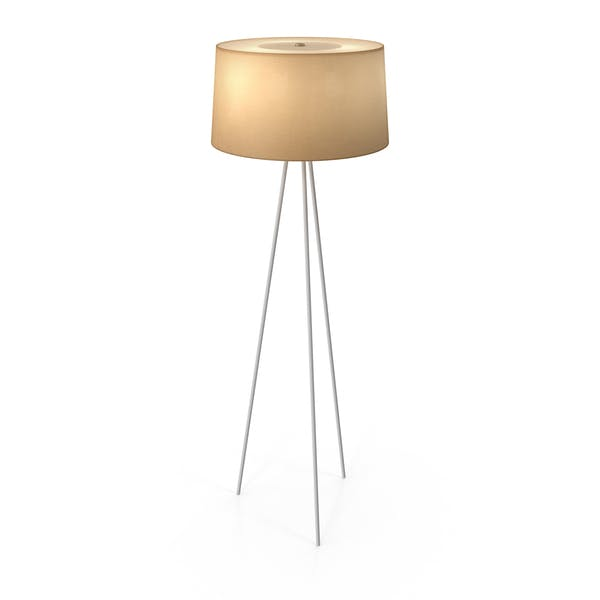 Thumbnail for Modern Floor Lamp