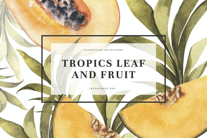 Thumbnail for Tropics Leaf & Fruits
