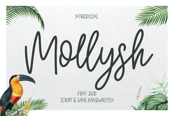 Thumbnail for Mollysh Calligraphy Font