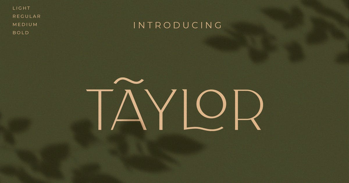 Download Taylor - Royal Classic Typeface by NEWFLIX