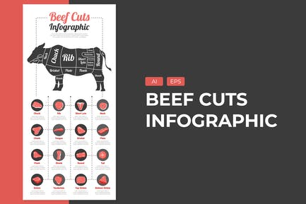 Beef Cuts - Infographic Template