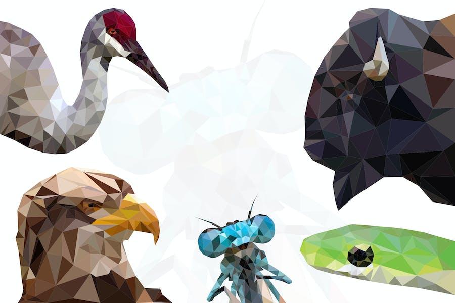 Animals Polygon Graphics - Li