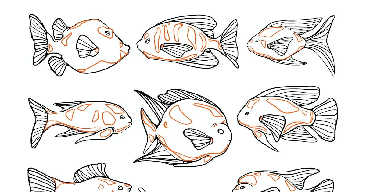 Download Aquarium Fish Doodles by Jumsoft