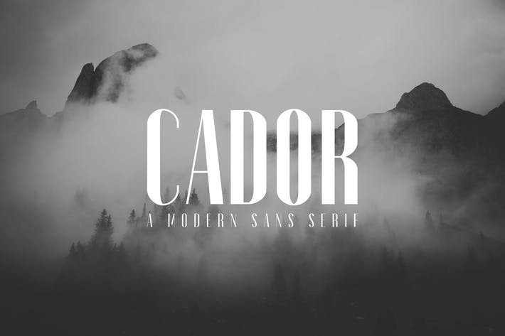 Thumbnail for Cador Sans Serif Font Family Pack