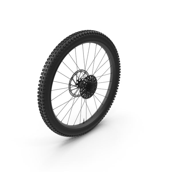Thumbnail for Rear Bike Wheel