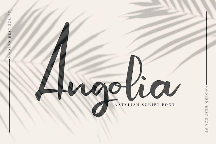 Thumbnail for Angolia Script Font