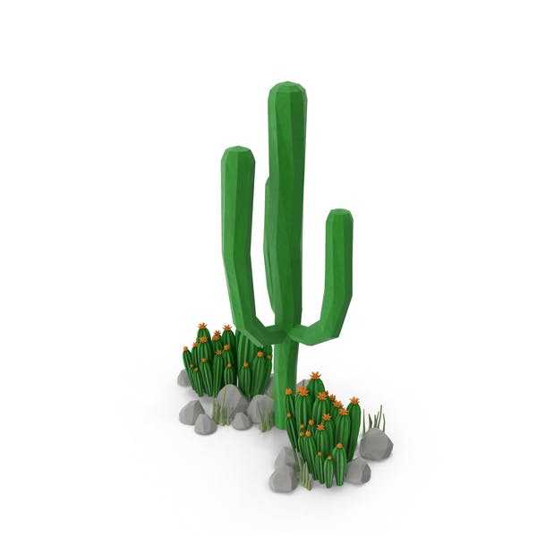Thumbnail for Cacti and Rocks