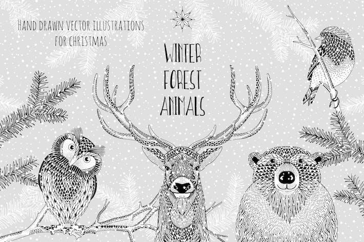 Animales de invierno - Ilustraciones Vector dibujadas a mano