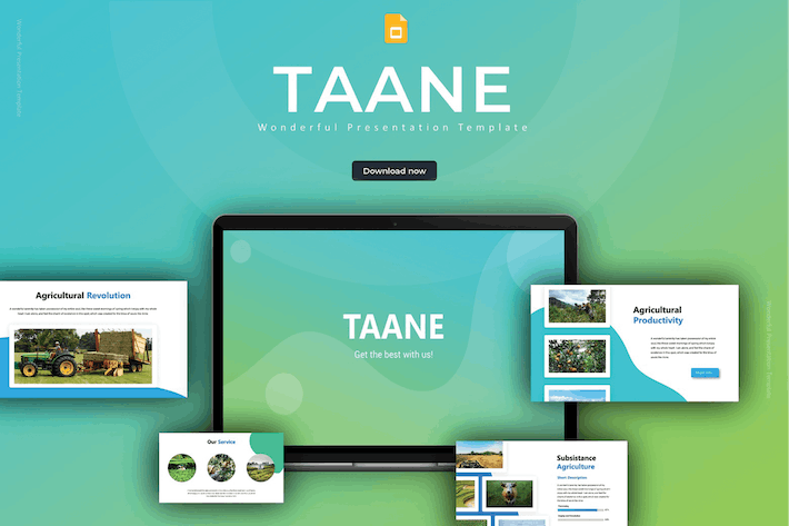 Thumbnail for Taane - Google Slides Template