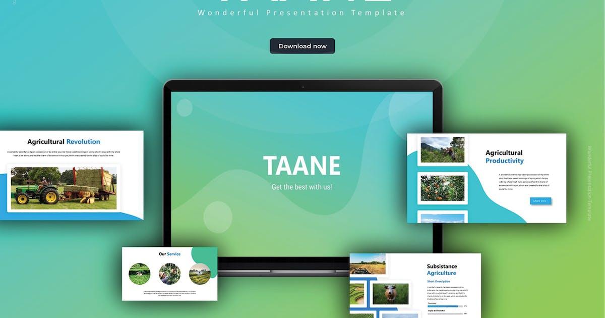 Download Taane - Google Slides Template by SlideFactory