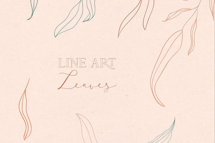 Thumbnail for Line drawing leaves illustrations and Art Brushes.