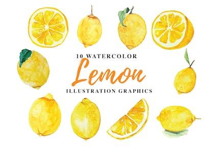 10 Aquarell Zitrone Illustration Grafiken