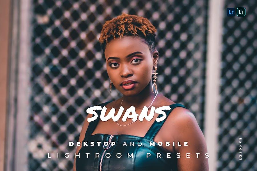 Swans Desktop and Mobile Lightroom Preset