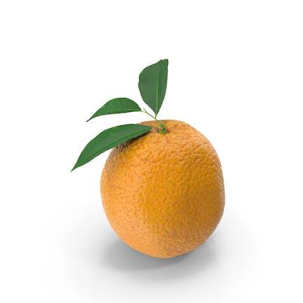 Orange mit Blättern