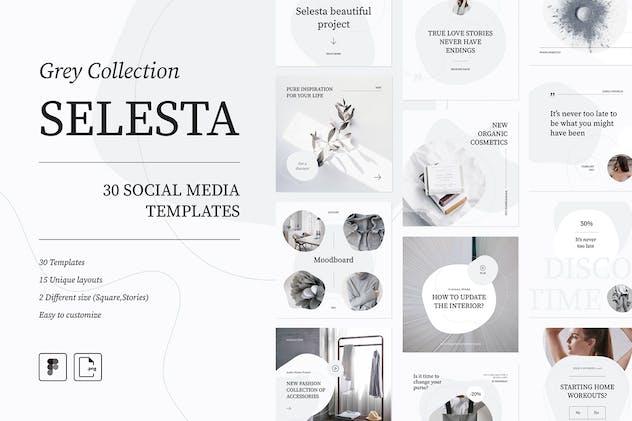 Selesta Grey Social Templates